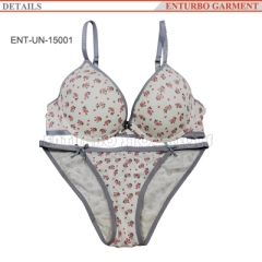 Women's underwear bra and panties set stocklots